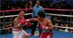 zawody w boksie